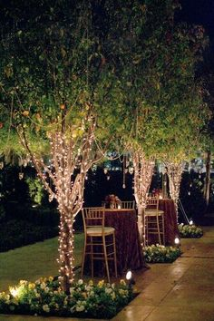 Little lights, a perfect night!