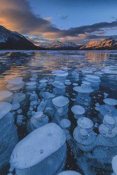 "captvinvanity: ""Methane bubbles | Photographer | CV"""