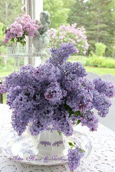 A lilac bouquet / Aiken House & Gardens Ikebana, Lilac Flowers, Spring Flowers, Beautiful Flowers, Lilac Bouquet, Purple Lilac, Purple Roses, Flowers Nature, Beautiful Flower Arrangements