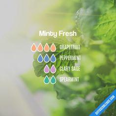 Minty Fresh - Essential Oil Diffuser Blend
