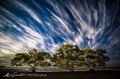 Photograph Windswept by Mel Sinclair on 500px