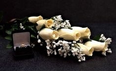 Cream Wax Roses