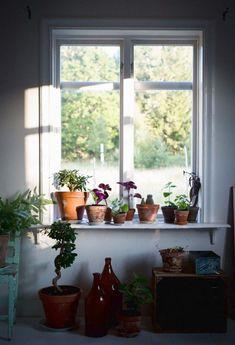 Home Interior 2019 Scandinavian Interior, Home Interior, Interior And Exterior, Interior Decorating, Interior Design, Decoration Plante, My Dream Home, Indoor Plants, Interior Inspiration