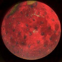 image of strawberry moon | UNDER THE STRAWBERRY MOON' ~ STRAWBERRY CREAM CAKE