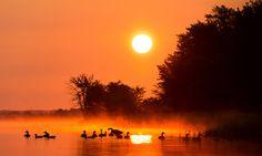 Enchanting Morning ♦ Matin enchanteur by Lucie Gagnon on 500px  Photographie : Lucie Gagnon  Copyright : Lucie Gagnon