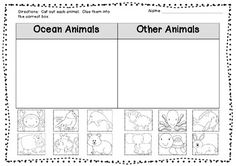 Ocean Animal Sort FREEBIE is part of Ocean Animal crafts - FunattheBeachMathandLiteracyCentersPlusMore Kindergarten Themes, Kindergarten Science, Preschool Lessons, Preschool Math, Teaching Science, Teaching Resources, Teaching Ideas, Ocean Activities, Classroom Activities