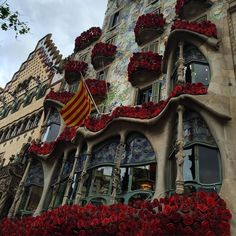 La más repetida en #Barcelona.  Está tan bonita!!!!! #santjordi