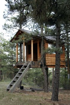 Simple Little Tree House ~~ Escape to read, nap, meditate or just to watch it rain.