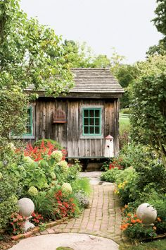 Hang birdhouses or cages nearby, and songbirds will flock to your shed.