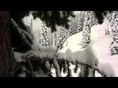 Winter's Back! | Fernie Alpine Resort