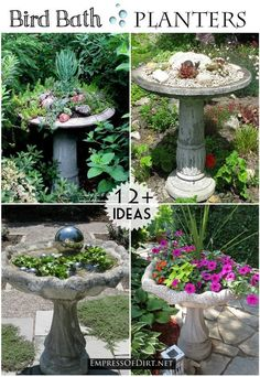 12+ Ideas for bird bath planters - turn that broken bird bath into something wonderful. Concrete birdbaths tend to crack apart. Use that as an opportunity to create a wonderful garden planter filled with succulents and flowers.