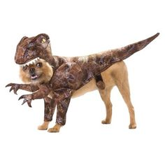 Show the world what a beast your dog truly is with the Raptor Dog Costume. This 1 piece headdress will outshine all the other dog halloween costumes with its prehistoric style. Subtly shimmered fabric replicates the dinosaur's hide, while a velcro strap safely attaches the headpiece under your dog's chin. This Halloween your dog will be epic.