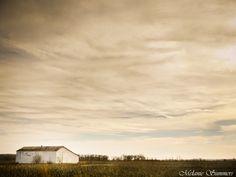 Old barn near Farling, Missouri