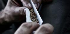Muitas pessoas pensam que a marijuana é inofensiva, mas há evidências de que a droga tem pelo efeitos negativos sobre a saúde. Saiba quais.