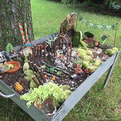 Winners of the 2015 Fairy Garden Contest | Fairy Gardens