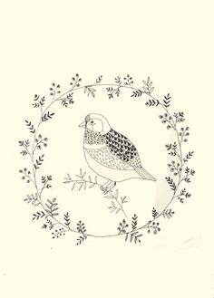 Nature. Katt Frank illustration.