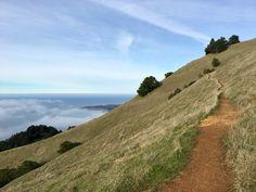 Mount Tamalpais State Park, Marin County, California - Beautiful...