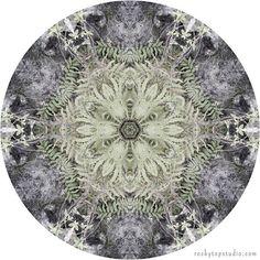 Nature Mandala Art Print by Allison Trentelman   rockytopstudio.com