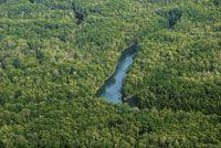 Los manglares alcanzan un gran desarrollo y ocupan amplias extensiones en la parte baja de las llanuras deltaicas.
