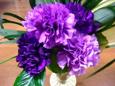 Cheap flower seeds, Buy Quality carnation seeds directly from China new seeds Suppliers: New Seeds Pcs/bag Purple Carnation Seeds Potted Courtyard Garden Plants Dianthus Caryophyllus Flower Seed, Growing Carnations, Purple Carnations, Mini Carnations, Purple Dahlia, Purple Bouquets, Pink Purple, Flowers For Sale, Summer Flowers, Rare Flowers