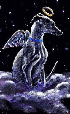 All my greyhound angels...I miss you all soooo much!!!