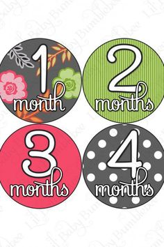 Monthly Onesie Baby Stickers - Tessa - Kirby Baby Bedding by Glenna Jean… Monthly Baby Photos, Maternity Photo Props, Pregnancy Gifts, Weekly Pregnancy, Pregnancy Belly, Baby Month Stickers, Baby Milestones, Baby Bumps, Baby Month By Month