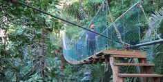 We crossed this on the way to zipline across the Bocawina Rainforest in Belize