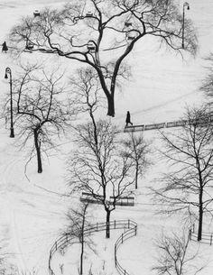 André Kertész Washington Square, Winter, 1954.                                                                                                                                                      More