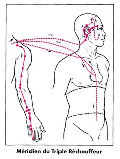 Acupuncture Can De-Stress - Acupuncture Hut Qi Gong, Ayurveda, Meridian Acupuncture, Lymphatic Massage, Shiatsu, Acupressure Treatment, Massage Benefits, Health Benefits, Traditional Chinese Medicine