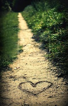 le chemin♥♥LOVE THIS♥♥