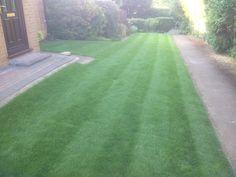 Lawncare treatment, Tadmarton, Oxfordshire Lawn Care, Sidewalk, Country Roads, Green, Lawn Maintenance, Side Walkway, Walkway, Walkways