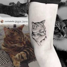60 Adorable Cat Tattoo Ideas Source by isadorabfranca Cat And Dog Tattoo, Kitten Tattoo, Dog Tattoos, Animal Tattoos, Body Art Tattoos, Small Tattoos, Cat Tattoo Designs, Forest Tattoos, Future Tattoos