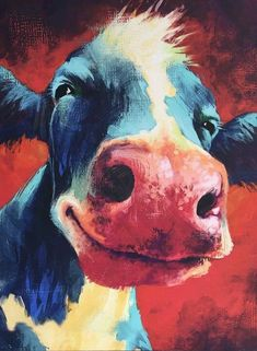 """NEW HAPPY COW FACE Canvas Print 16"""" x 20"""" BRIGHT COLORS"""