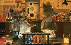 Image result for pictures of fantastic mr. fox by roald dahl