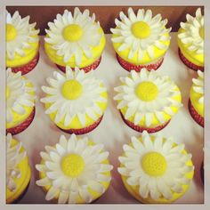 www.sweetelizabethcakes.com  #mini crawfish pots #cajun crawfish boil #desserts #cup cakes #daisies #flower #yellow #Southern Louisiana   Sweet Elizabeth Cake Designs