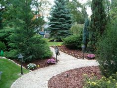 Beautiful Gardens, Home Projects, Gardening Tips, Outdoor Gardens, Stepping Stones, Sidewalk, Outdoor Decor, Plants, Home Decor