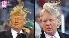 10 Shocking Donald Drumpf Facts You Have To See