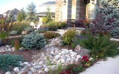 xeriscape landscaping pictures colorado | Front Yard Xeriscape