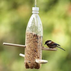 Recycled Plastic Bottle Bird Feeder;  All you need for this great recycled DIY bird feeder is a used 1-liter plastic bottle, two wooden spoons, a small acrew, and a length of twine for hanging.