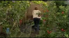 Alys Fowler. Edible Garden - YouTube. 6 of 6 The Winter Larder