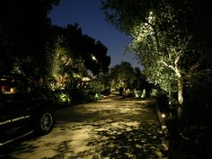 Featured Project: Beverly Hills Landscape Lighting - LED Landscape Lighting  #LEDLandscapeLighting  #landscapelighting #beverlyhillslandscapelighting