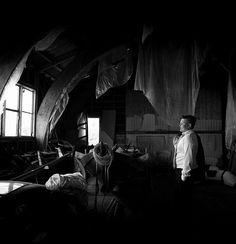 Portrett Fotograf Gøril Sætre Norge Concert, Concerts