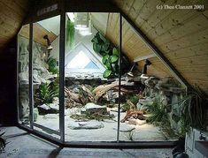 Large Terrarium (or vivarium) that I'd love to strive for one day. Reptile Habitat, Reptile Room, Reptile Cage, Reptile Enclosure, Chameleon Enclosure, Tarantula Enclosure, Turtle Habitat, Les Reptiles, Reptiles And Amphibians