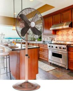 Deco Breeze® Serene 16 Inch Standing Floor Fan   Home Decor   Pinterest   Floor  Fans, Room And House