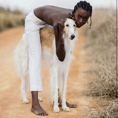 mans best friend even in africa Greyhound Art, Italian Greyhound, Animals And Pets, Cute Animals, Photo Animaliere, Love Dogs, Beautiful Dogs, Belle Photo, Dog Life
