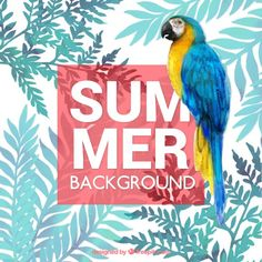 Summer tropical background with watercolors Free Vector