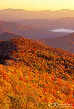Early Morning Autumn | Cherohala Skyway-Nantahala National Forest-Snowbird Mountains, North Carolina | Photo credit: Kevin Adams | Flickr - Photo Sharing! #fall_colors