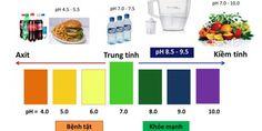 Cách thức để duy trì độ PH ở mức trung tính