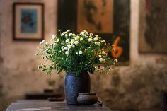 > Ambiance retro et arty dans le Cafe Cuối Ngõ à Hanoi. Hanoi, Cafe Bar, Vietnam, Retro, Plants, Plant, Retro Illustration, Planets