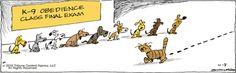 Will they pass the test?? | Read Bound and Gagged #comics @ www.gocomics.com/boundandgagged/2015/04/08?utm_source=pinterest&utm_medium=socialmarketing&utm_campaign=social-pin | #GoComics #webcomic #dogs